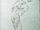 FireNightmare-CodexSketch.png