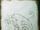 CursedTatzelwurm-CodexSketch.png