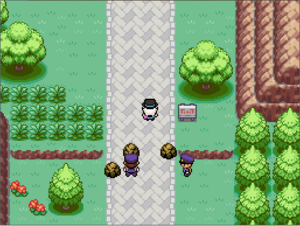 Route 15