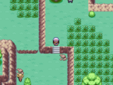 Route 17