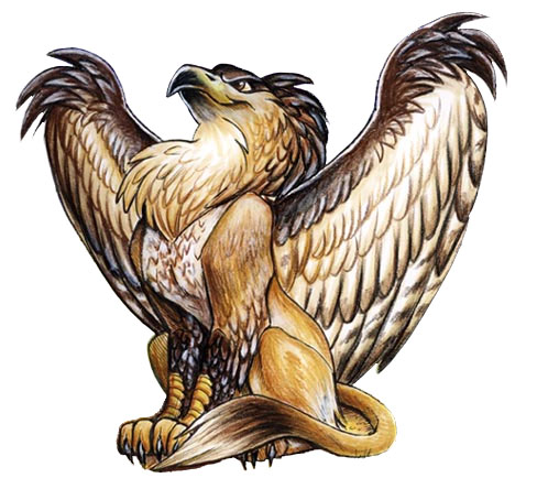 Image result for griffin