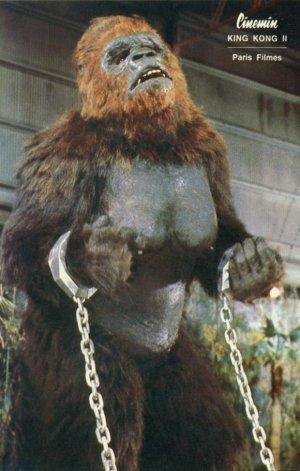 File:Lady Kong.jpg