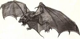 Probe-Bat sketch