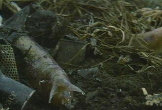 Last Days of Planet Earth - Monsters - Giant Slugs