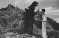 Godzilla and a Man Standing on a Mountain