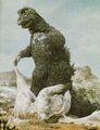SOG - Godzilla and Minilla Before They Fight Kumonga