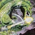 Godzilla (Mutation)