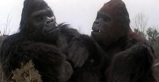 File:Kong and Lady Kong.jpg