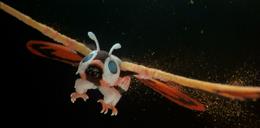 ROM - Mothra Sparklez