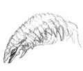 Concept Art - Godzilla 2000 Millennium - Orga 65