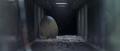 Godzilla vs. Megaguirus - Meganulon Egg gets thrown down sewer