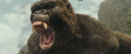 Kong Skull Island - Rise of the King Trailer - 00028
