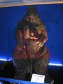 Suit and Puppet Museum - RadoGoji