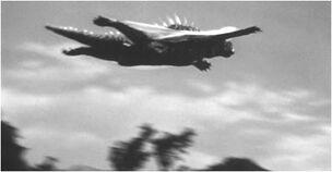 Varan glide