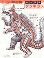 Anguirus anatomy