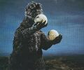 GVH - Godzilla Holding Hedorah's Eggs