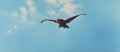 All Monsters Attack - Giant Condor flies in while in stock footage form 4