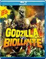 2012 GvB Blu-ray