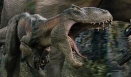 Venatosaurus