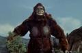 King Kong vs. Godzilla - 38 - Pose