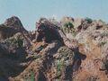 DAM - Varan On a Rock