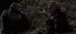 King Kong and Lady Kong
