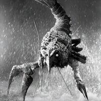 Kaiju Guide Ebirah