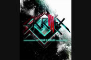 Skrillex Weekends!!!.jpeg