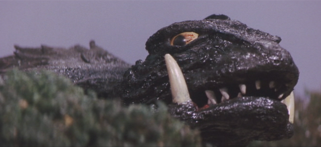 File:Gamera - 5 - vs Guiron - 45 - Gamera drops off the children on Earth.png