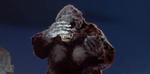 Kong's Facepalm