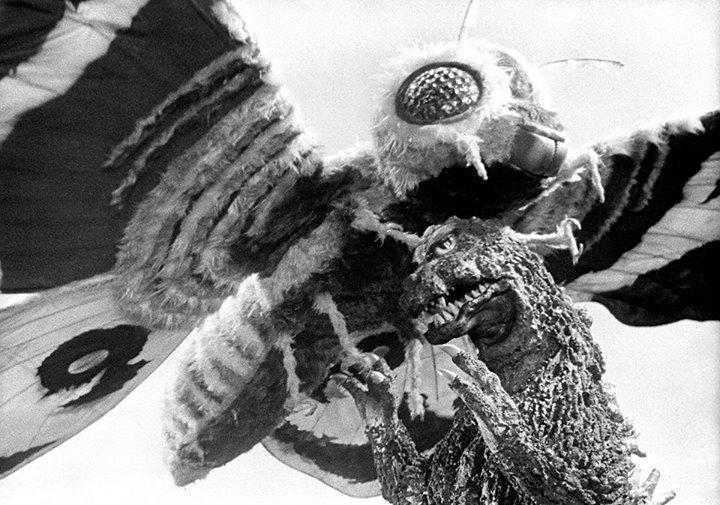 godzilla vs mothra 1964 dvd
