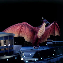 Godzilla.jp - Fire Rodan