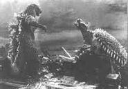 Godzilla raids again, Godzilla vs anguirus