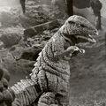 Gorosaurus 1