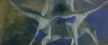 Dogora HD 2
