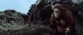 King Kong vs. Godzilla - 64 - Im Over Here Goji