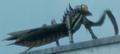Kamacuras FinalKama Final Wars 1