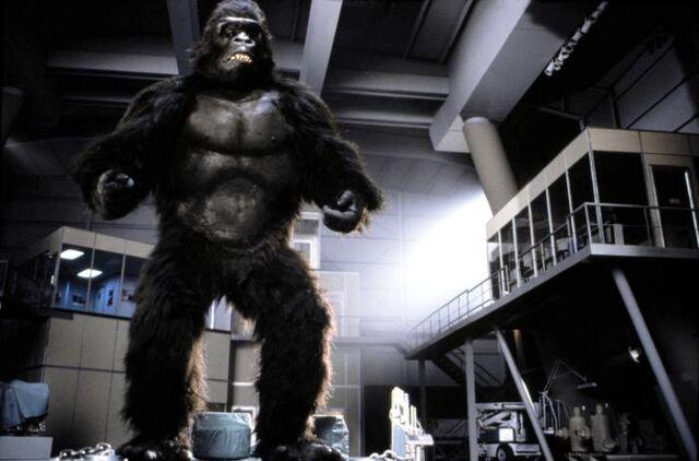 File:King Kong 1986.jpg