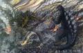 Concept Art - Godzilla Final Wars - Godzilla vs. Keizer Ghidorah