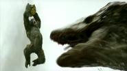 Kong 2017 6
