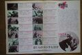 1974 MOVIE GUIDE - GODZILLA VS. MECHAGODZILLA thin pamphlet PAGES 2