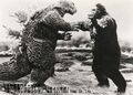 KKVG - King Kong and Godzilla About to Clash