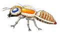Concept Art - Godzilla Tokyo SOS - Mothra Imago 2