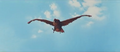 All Monsters Attack - Giant Condor flies in while in stock footage form 5
