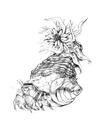 Concept Art - Yamato Takeru - Kaishin Muba 1