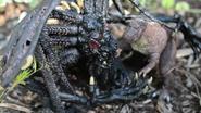 MIB - Godzillasaurus and Cthulhu