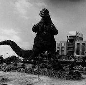 Godzilla 1964 (2)