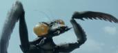 Godzilla Final Wars - 4-1 Kamacuras Reappears (1)