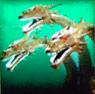 Godzilla on Monster Island - King Ghidorah Slot