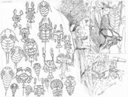 Ember-barrett-petroglyphs-web